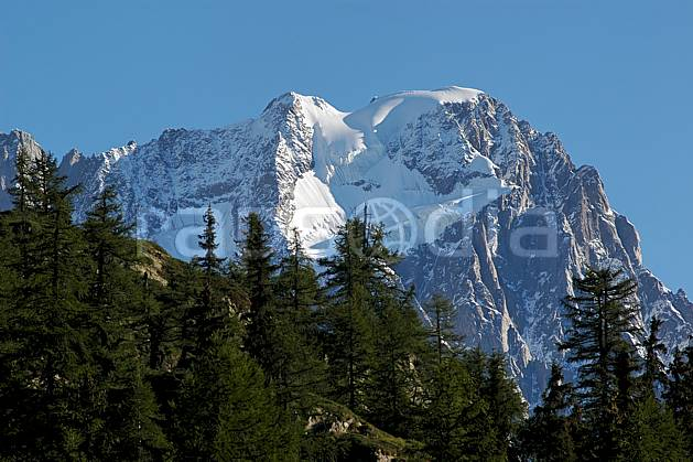 aa042125LE royalty free depuis le col checrouit, grandes jorasses, alpes, Europe, EEC, fir tree, cliff, tree, middle mountain, landscape (Italy).