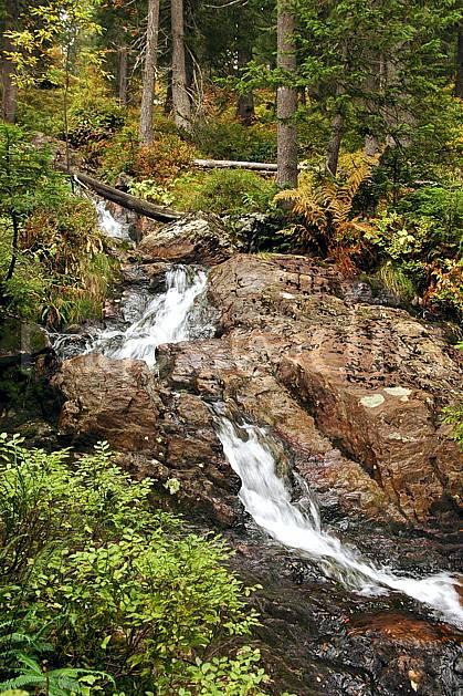 aa042473LE : Beaufortain, Savoie, Alpes.  Europe, CEE, bois, C02, C01 forêt, moyenne montagne, paysage, rivière (France).