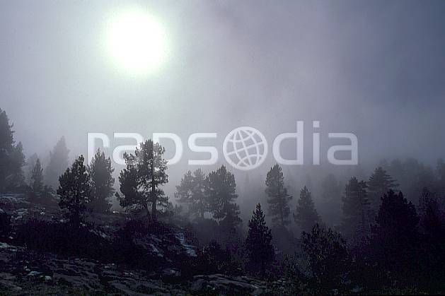 aa0478-07GE forêt dans la brume, haute-savoie, Europe, EEC, fog, blue sky, fir tree, tree, forest, middle mountain, landscape, sun, Annecy 2018 (France).