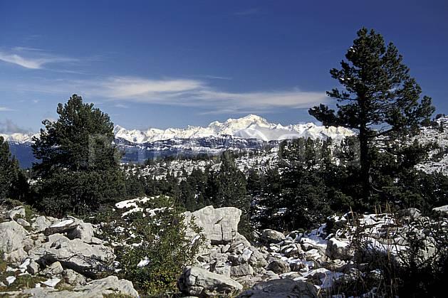 aa0479-11LE : Mont Blanc et Chaine des Aravis depuis le Parmelan, Haute-Savoie, Alpes.  Europe, CEE, ciel bleu, pin, C02, C01 arbre, moyenne montagne, paysage, Annecy 2018 (France).