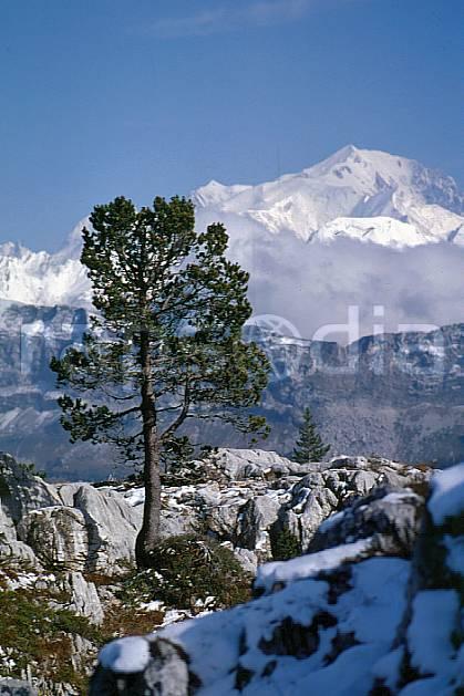 aa0479-26GE mont blanc depuis le parmelan, haute-savoie, Europe, EEC, blue sky, tree, middle mountain, landscape, Annecy 2018 (France).