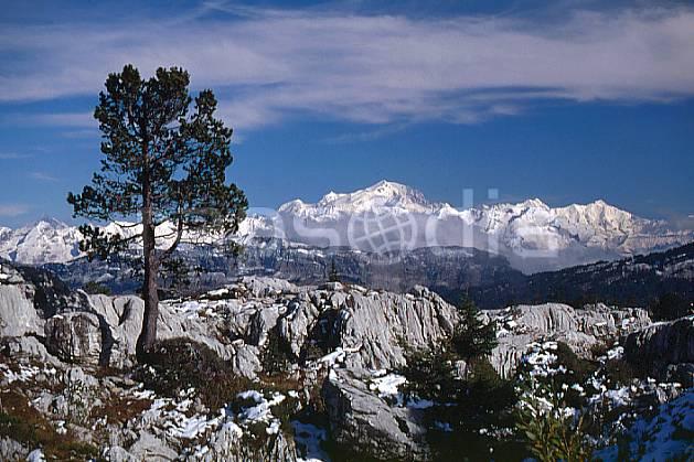 aa0479-28GE massif du mont blanc depuis le parmelan, haute-savoie, Europe, EEC, blue sky, tree, middle mountain, landscape, Annecy 2018 (France).