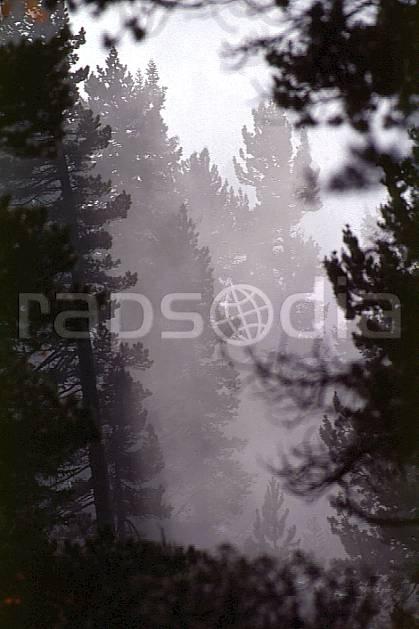aa0479-37GE forêt dans la brume, parmelan, haute-savoie, Europe, EEC, fog, cloudy, fir tree, tree, forest, middle mountain, landscape, Annecy 2018 (France).