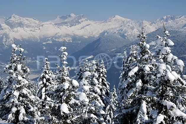 aa050896LE : Haut Giffres depuis Saint Nicolas de Véroce, Haute-Savoie, Alpes.  Europe, CEE, sapin, enneigé, vallée, C02, C01 arbre, forêt, moyenne montagne, paysage, Annecy 2018 (France).