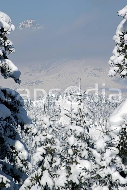 aa050904LE : Depuis Saint Nicolas de Véroce, Haute-Savoie, Alpes.  Europe, CEE, sapin, enneigé, brouillard, C02, C01 arbre, forêt, moyenne montagne, paysage, Annecy 2018 (France).