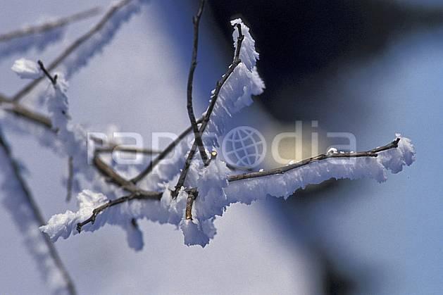 aa0513-20LE : Branche givrée, Le Semnoz, Haute-Savoie, Alpes.  Europe, CEE, C02, C01, brindille arbre, gros plan, moyenne montagne, Annecy 2018 (France).
