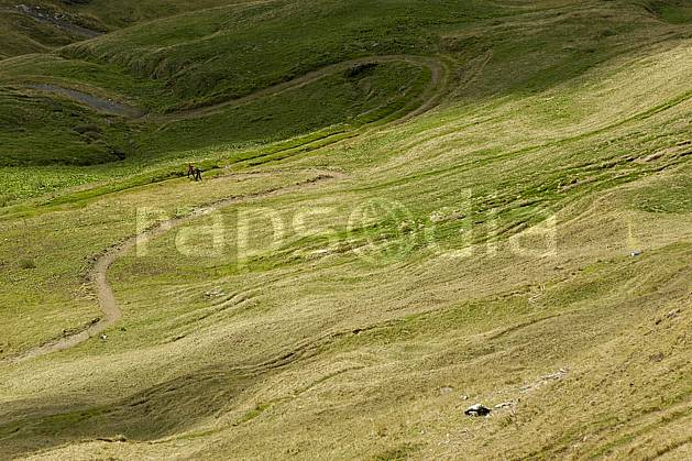 aa055691LE royalty free morzine, avoriaz, sous la pointe de fornet, haute-savoie, alpes, hiking, Europe, EEC, sport, leisure, action, mountain sport, mountain pasture, footpath, grass, middle mountain, landscape, people, Annecy 2018 (France).