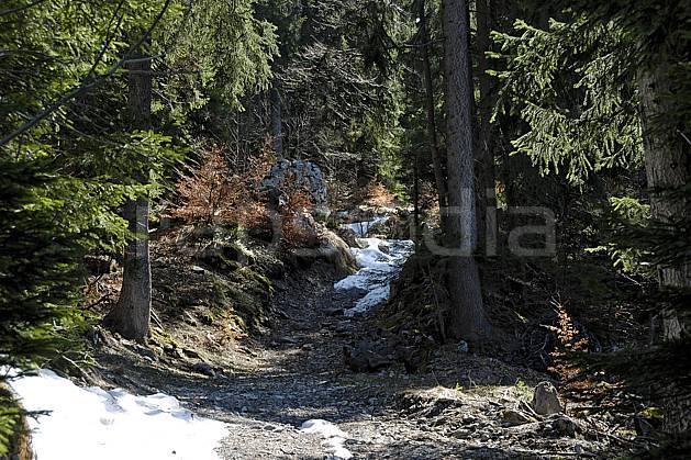 aa061075LE : Plateau de Plaine Joux, Haute-Savoie, Alpes.  Europe, CEE, sentier, sentier, sapin, épicéa, C02, C01 arbre, forêt, moyenne montagne, paysage, Annecy 2018 (France).