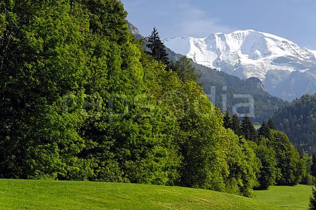 aa063373LE : Dômes de Miage depuis Saint Gervais les Bains, Haute-Savoie, Alpes.  Europe, CEE, C02, C01 arbre, forêt, moyenne montagne, paysage, Annecy 2018 (France).
