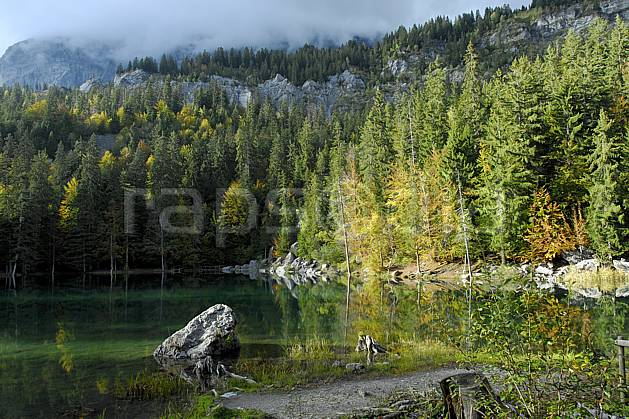 aa063408GE plateau d'assy, lac vert, haute-savoie, Europe, EEC, pond, tree, forest, lake, middle mountain, landscape, Annecy 2018 (France).