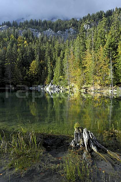 aa063413GE plateau d'assy, lac vert, haute-savoie, Europe, EEC, pond, tree, forest, lake, middle mountain, cloud, landscape, Annecy 2018 (France).