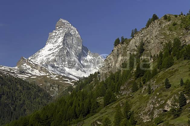 aa070355LE : Le Cervin vu depuis Zermatt, Alpes.  Europe, falaise, C02 forêt, moyenne montagne, paysage (Suisse).
