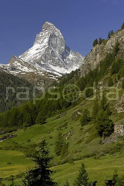 aa070357LE : Le Cervin vu depuis Zermatt, Alpes.  Europe, falaise, alpage, C02 forêt, moyenne montagne, paysage (Suisse).