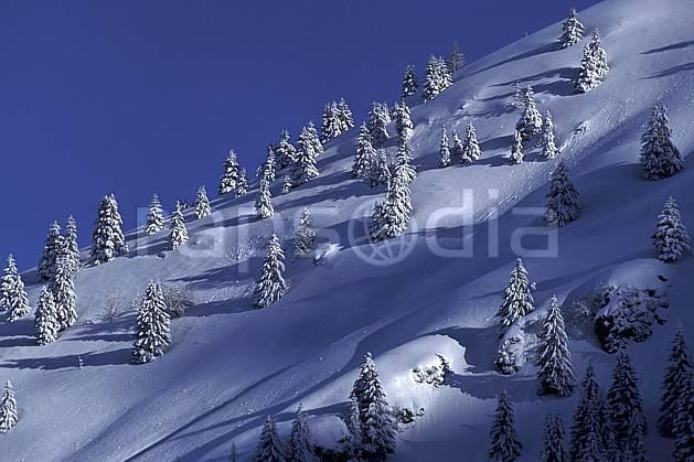 aa0708-03LE : Bellacha, Haute-Savoie, Alpes.  Europe, CEE, ciel bleu, sapin, C02, C01, poudreuse arbre, moyenne montagne, paysage, Annecy 2018 (France).