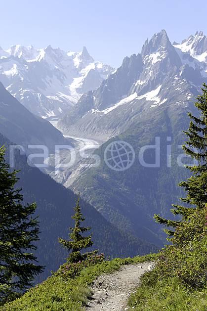 aa071460LE : Sentier du balcon sud, vue sur la Mer de Glace, les Jorasses et le Grand Charmoz, Aiguilles Rouges, Chamonix, Alpes.  Europe, CEE, glacier, C02 arbre, moyenne montagne, paysage (France).