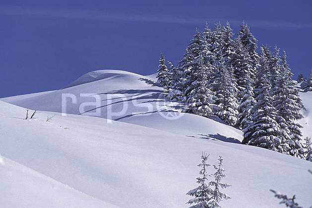 aa0719-12LE : Le Grand Bornand, Haute-Savoie, Alpes.  Europe, CEE, ciel bleu, sapin, C02, C01, poudreuse arbre, moyenne montagne, paysage, Annecy 2018 (France).