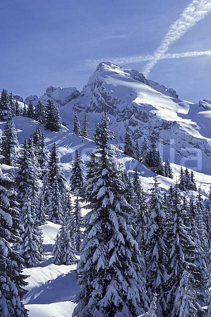aa0719-31LE : Mont Charvet, Aravis, Haute-Savoie, Alpes.  Europe, CEE, poudreuse, sapin, C02, C01 arbre, moyenne montagne, paysage, Annecy 2018 (France).