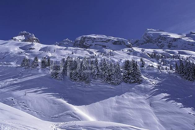 aa0720-01LE : Aravis, Haute-Savoie, Alpes.  Europe, CEE, ciel bleu, sapin, C02, C01 arbre, moyenne montagne, paysage, Annecy 2018 (France).