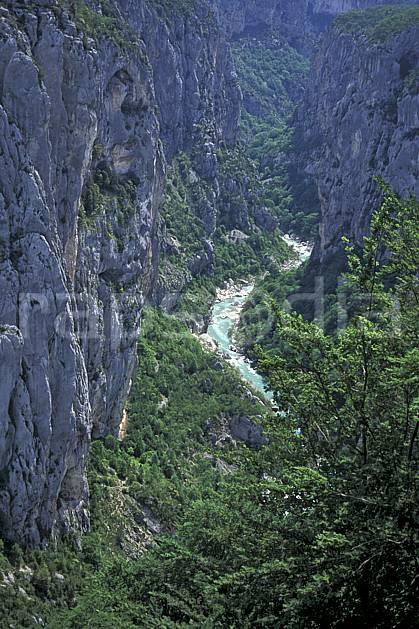 aa0788-31LE : Le Verdon, Var, Alpes.  Europe, CEE, falaise, C02, C01 arbre, moyenne montagne, paysage, rivière (France).