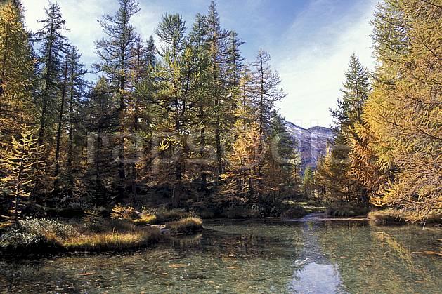 aa0844-32LE : Etang, Le Monal , Savoie, Alpes.  Europe, CEE, mélèze, C02, C01 arbre, moyenne montagne, paysage, rivière (France).