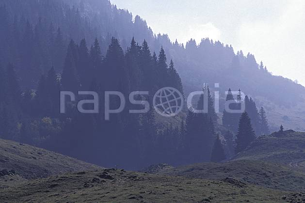 aa0856-33LE : Forêt, Ablon, Haute-Savoie, Alpes.  Europe, CEE, brouillard, ciel voilé, sapin, C02, C01 arbre, forêt, moyenne montagne, paysage, Annecy 2018 (France).