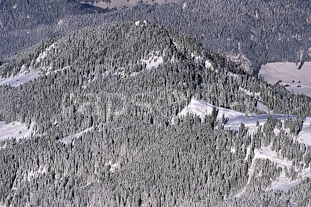 aa0886-21LE : Tête du Danay, Haute-Savoie, Alpes.  Europe, CEE, sapin, vue aérienne, C02, C01 arbre, forêt, moyenne montagne, paysage, textures et fonds, Annecy 2018 (France).