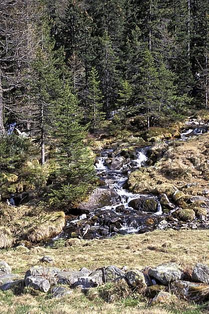 aa0957-06LE : Torrent de montagne, Haute-Savoie, Alpes.  Europe, CEE, sapin, C02, C01 arbre, forêt, moyenne montagne, paysage, rivière, Annecy 2018 (France).