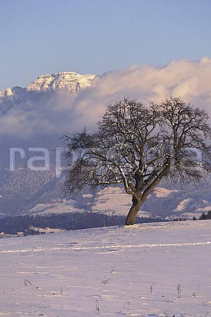 aa1078-26LE : Parmelan, Haute-Savoie, Alpes.  Europe, CEE, champ, C02, C01 arbre, moyenne montagne, nuage, paysage, Annecy 2018 (France).