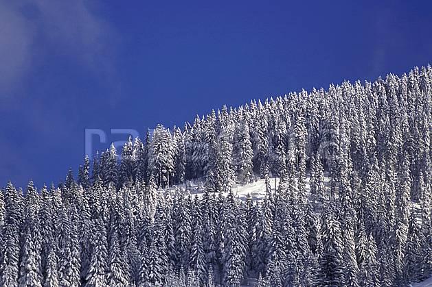 aa1081-16LE : Forêt enneigée, Haute-Savoie, Alpes.  Europe, CEE, ciel bleu, sapin, C02, C01 arbre, forêt, moyenne montagne, paysage, Annecy 2018 (France).
