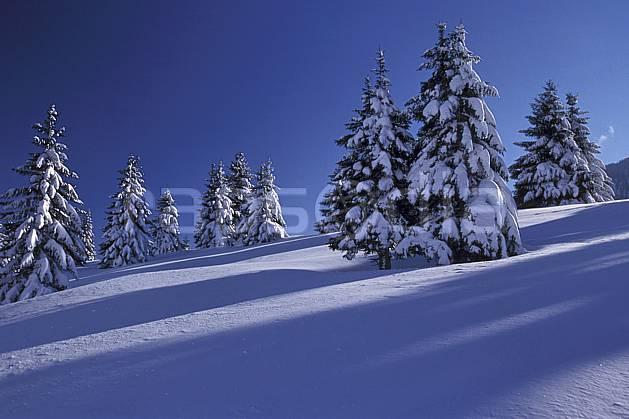 aa2126-13LE : Les Glières, Haute-Savoie, Alpes.  Europe, CEE, ciel bleu, sapin, C02, C01 arbre, moyenne montagne, paysage, Annecy 2018 (France).