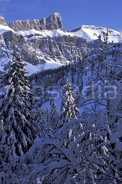aa2137-18LE : Les Diablerets, Alpes Vaudoises, Alpes.  Europe, ciel bleu, sapin, C02, C01 arbre, forêt, moyenne montagne, paysage (Suisse).