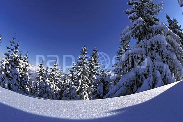 aa2143-07LE : La Clusaz, Haute-Savoie, Alpes.  Europe, CEE, ciel bleu, sapin, poudreuse, C02, C01 arbre, moyenne montagne, paysage, Annecy 2018 (France).