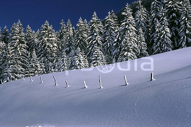 aa2333-30LE : Forêt, Jura, Alpes.  Europe, CEE, ciel bleu, sapin, poteau, C02, C01 arbre, forêt, moyenne montagne, paysage (France).