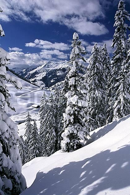 aa2410-20LE : Les Contamines, Haute-Savoie, Alpes.  Europe, CEE, ciel nuageux, sapin, C02, C01 arbre, moyenne montagne, paysage, Annecy 2018 (France).