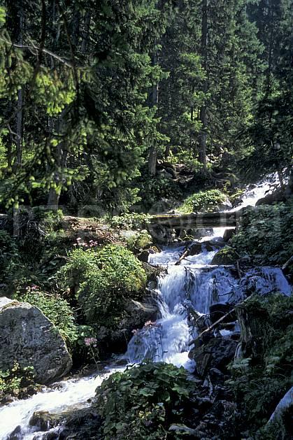 aa2517-34LE : Torrent, Champex, Alpes.  Europe, C02, C01 arbre, forêt, moyenne montagne, paysage, rivière (Suisse).