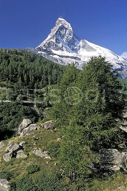 aa2531-35LE : Le Cervin, Alpes.  Europe, ciel bleu, falaise, C02, C01 arbre, forêt, moyenne montagne, paysage (Suisse).