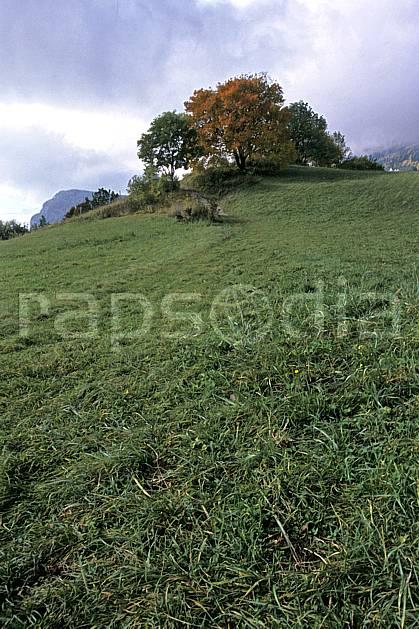aa2562-18LE : Plateau du Touvet, Isère, Alpes.  Europe, CEE, champ, ciel nuageux, herbe, champ, C02, C01 arbre, moyenne montagne, paysage (France).