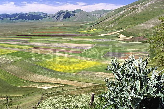 aa2691-22LE : Grande plaine de Castellucio di Norcia.  Europe, CEE, champ, fleur, herbe, vallée, C02, C01 moyenne montagne, paysage (Italie).