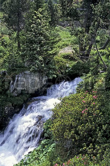 aa2746-22LE : Les Arcs, Savoie, Alpes.  Europe, CEE, C02, C01 arbre, cascade, forêt, moyenne montagne, paysage, rivière (France).