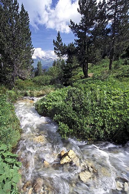 aa2747-08LE : Les Arcs, Savoie, Alpes.  Europe, CEE, ciel nuageux, C02, C01 arbre, forêt, moyenne montagne, paysage, rivière (France).