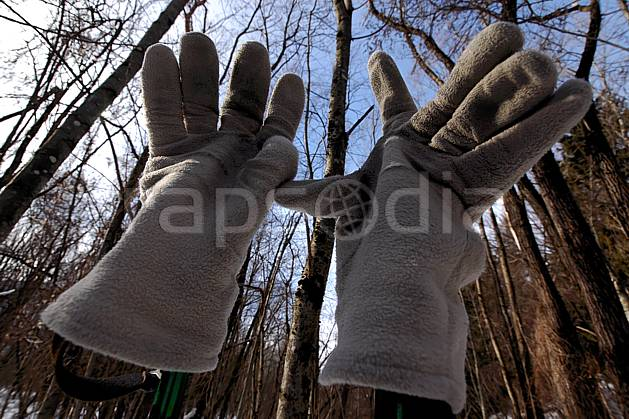 ab050658LE royalty free gants, Europe, EEC, glove, tree, forest, tight shot, people (Germany).