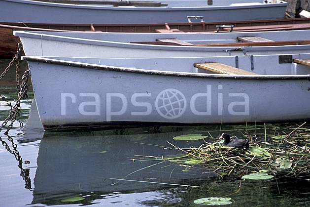 ac0296-10LE : Nid de poule d'eau dans les nénuphars, Lac d'Annecy, Haute-Savoie.  Europe, CEE, barque, bateau, canard, nénuphar, C02, C01 environnement, faune, lac, transport, Annecy 2018 (France).
