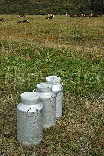 ae042475LE : Boille à lait, Beaufortain, Savoie, Alpes.  Europe, CEE, bidon, champ, lait, vache, C02, C01 environnement, faune, moyenne montagne (France).