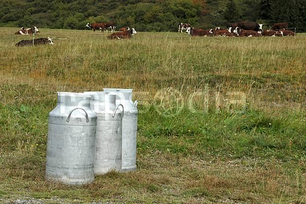 ae042478LE : Boille à lait, Beaufortain, Savoie, Alpes.  Europe, CEE, bidon, champ, lait, vache, troupeau, C02, C01 environnement, faune, moyenne montagne (France).