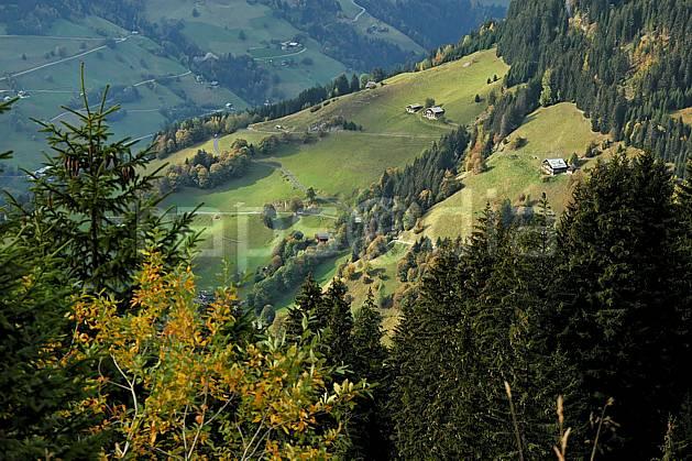 ae042655LE : Beaufortain, Savoie, Alpes.  Europe, CEE, habitation, cabane, vallée, C02, C01 arbre, environnement, forêt, moyenne montagne, paysage (France).