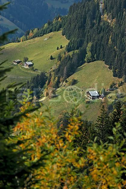 ae042661LE : Beaufortain, Savoie, Alpes.  Europe, CEE, village, cabane, C02, C01 arbre, environnement, forêt, habitation, moyenne montagne, paysage (France).