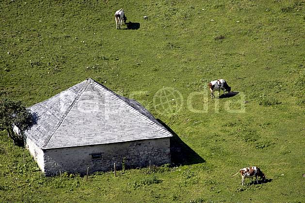 ae055727LE : Ferme d'alpage.  Europe, ferme, vache, alpage, vue aérienne, C02, C01 environnement, habitation, moyenne montagne, paysage (Suisse).