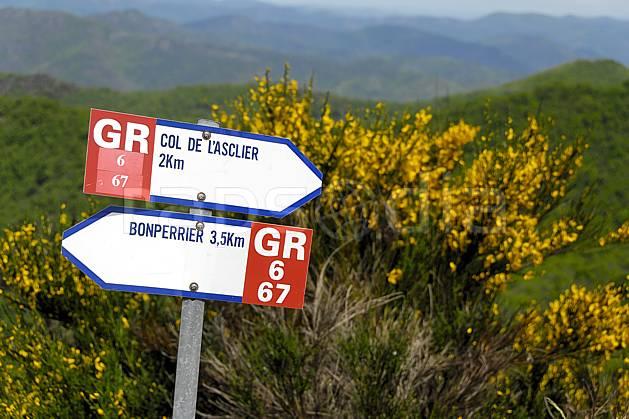 ae062430LE : Panneau de randonnée GR, Massif des Cévennes, Gard. randonnée pédestre Europe, CEE, sport, rando, loisir, action, sport de montagne, signalisation, fleur, genêt, C02, C01 environnement, moyenne montagne (France).