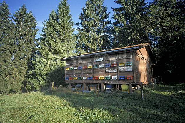 ae2898-14LE : Rûcher, Jura.  Europe, CEE, herbe, ruche, C02, C01 environnement, moyenne montagne (France).