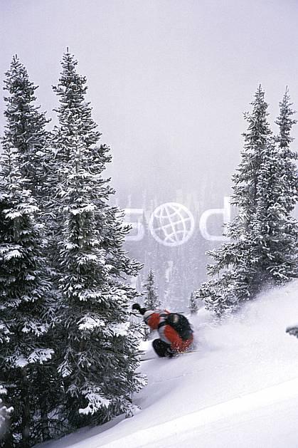 da2380-02LE : Ski-freeride, Marmot Basin, Alberta. ski hors piste Amérique du nord, Amérique, sport, loisir, action, glisse, sport de montagne, sport d'hiver, ski, sport extrême, brouillard, gerbe, pente, poudreuse, sapin, virage coupé, C02, C01 arbre, forêt, homme, personnage (Canada).